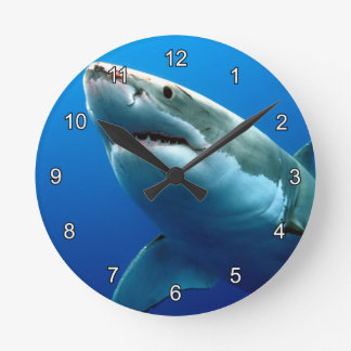 GREAT WHITE SHARK 3 ROUND CLOCK
