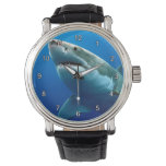 Great White Shark 3 Watch at Zazzle