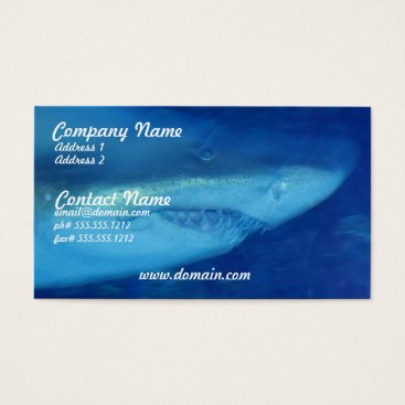 Professional Business Great White Shark Business Card