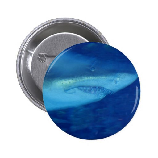 Great White Shark Button