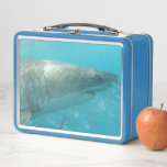 Great White Shark Close Up Portrait Sea Metal Lunch Box
