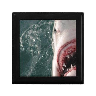 Great white shark gift box