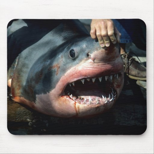 Great White Shark Mouse Pads