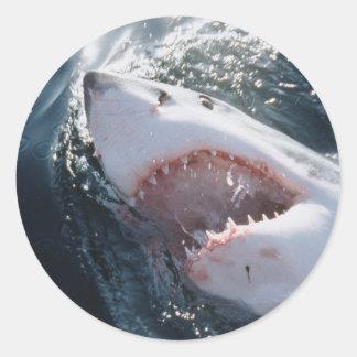 Great White Shark on sea Classic Round Sticker