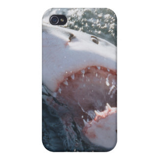 Great White Shark on sea iPhone 4/4S Cover