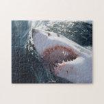 "Great White Shark on sea Jigsaw Puzzle<br><div class=""desc"">Amos Nachoum / DanitaDelimont.com   Nature,  Fauna   Great White Shark on sea</div>"