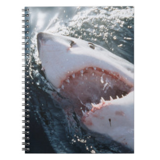Great White Shark on sea Note Book