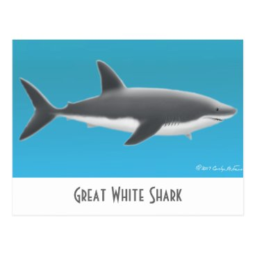 Professional Business Great White Shark Postcard