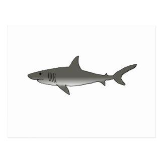 Great White Shark Postcards