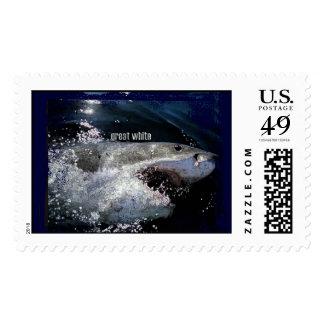 Great White Shark Stamp