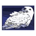 Great White Snowy Owl Postcard