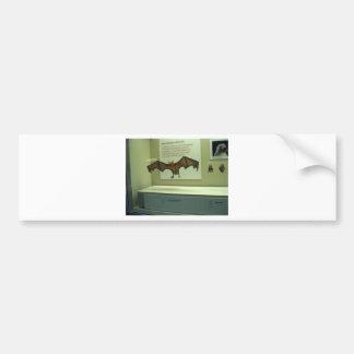 Greater Bulldog Bat (Noctilio leporinus) Bumper Sticker