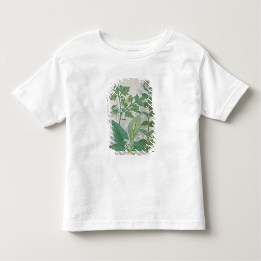 Greater Celandine or Poppy Toddler T-shirt