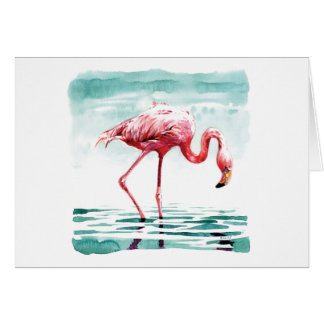 Greater flamingo card