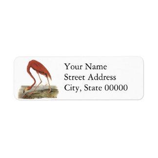 Greater Flamingo, John Audubon Return Address Label