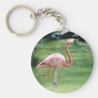 Greater Flamingo Key Chains