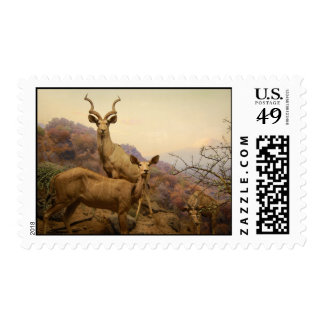 Greater Kubu Postage Stamp