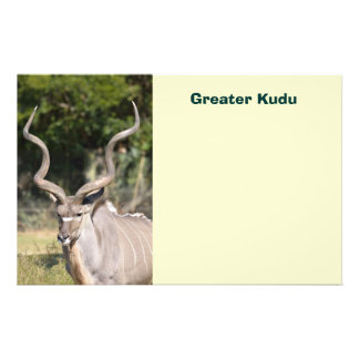 Greater Kudu Flyer