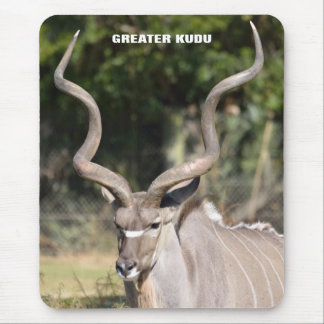 Greater Kudu Mouse Pad