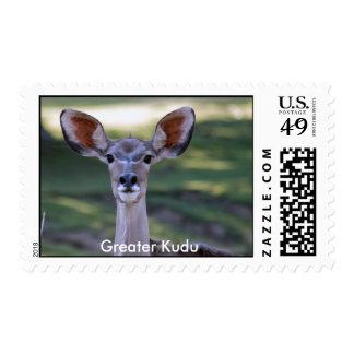 Greater Kudu Stamp