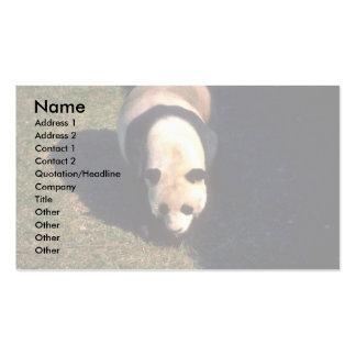 Greater Panda Business Card