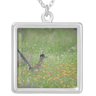 Greater Roadrunner, Geococcyx Square Pendant Necklace