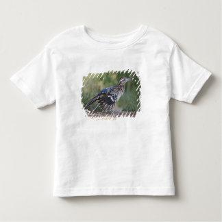 Greater Roadrunner in Texas 2 Toddler T-shirt