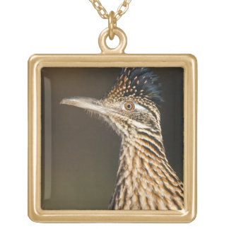 Greater Roadrunner in Texas Gold Plated Necklace