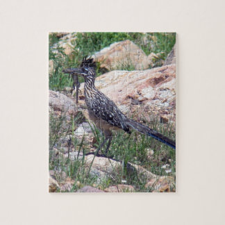 Greater Roadrunner Jigsaw Puzzle