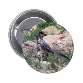 Greater Roadrunner Pinback Button