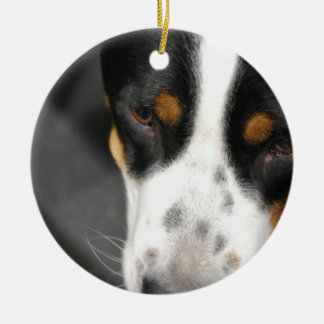 greater-swiss-mountain-dog-1 jpg ornaments