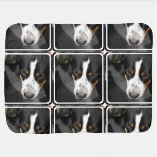 greater-swiss-mountain-dog-1.jpg baby blankets