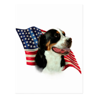 Greater Swiss Mountain Dog Flag Postcard