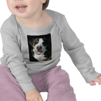 Greater Swiss Mountain Dog: Happy Tshirts