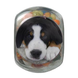 Greater Swiss Mountain Dog Jelly Belly™ Glass Jar