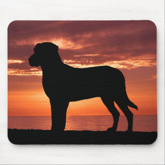 Greater Swiss Mountain Dog Mouse Pad