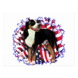 Greater Swiss Mountain Dog Patriot Postcard