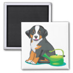 Greater Swiss Mountain Dog Puppy Fridge Magnets