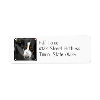 Greater Swiss Mountain Dog Puppy  Mailing Labels