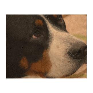 Greater Swiss Mountain Dog Cork Paper