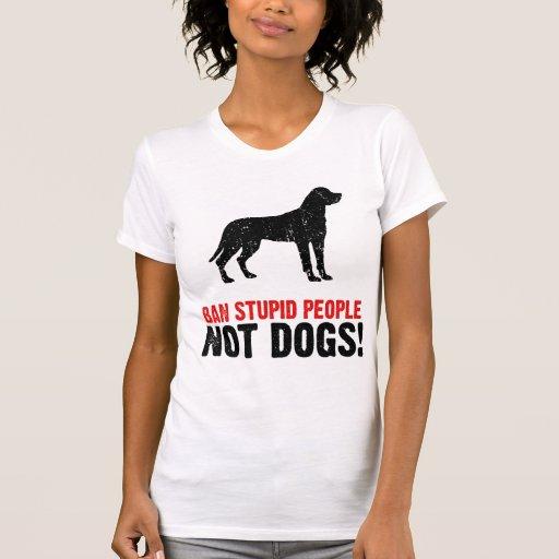 Greater Swiss Mountain Dog T Shirt