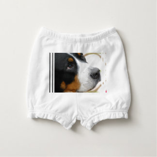 Greater Swiss Mountain Dog Diaper Cover