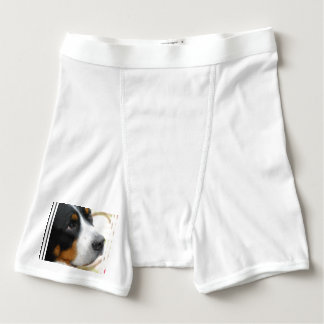 Greater Swiss Mountain Dog Boxer Briefs