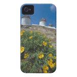 Grecia, islas de Cícladas, Mykonos, florece cerca Case-Mate iPhone 4 Funda