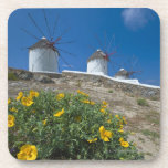 Grecia, islas de Cícladas, Mykonos, florece cerca Posavaso
