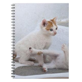 Grecia, Mykonos, el jugar de los gatitos Libreta Espiral