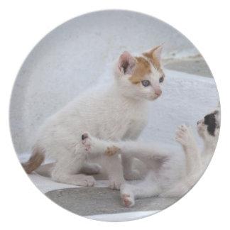 Grecia Mykonos el jugar de los gatitos Plato De Comida