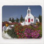 Grecia, Mykonos, pequeña capilla linda en Tapetes De Ratones