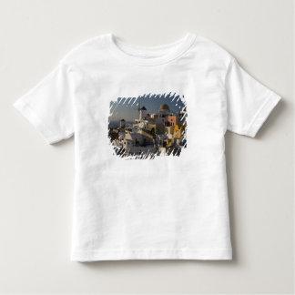 Greece and Greek Island of Santorini town of Oia T Shirt