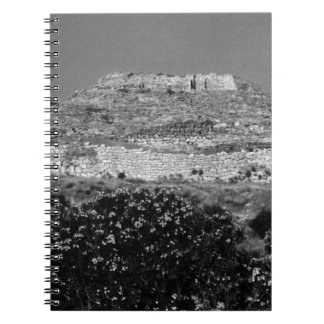 Greece Athens Mycenae acropolis overview 1970 Spiral Notebook